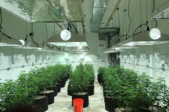 Dehumidification For Grow Rooms MI
